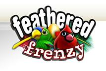 Feathered Frenzy Reactor