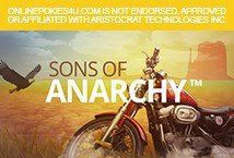 Sons of Anarchy ™