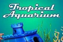 Tropical Aquarium